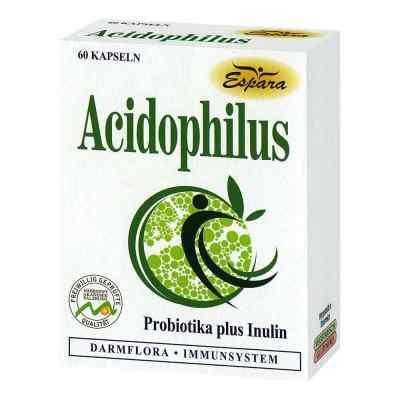 Acidophilus Kapseln  bei versandapo.de bestellen