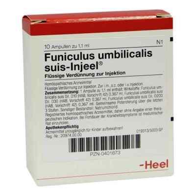 Funiculus Umbilicalis suis Injeel Ampullen  bei versandapo.de bestellen