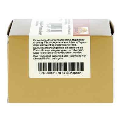 Carnitin 500 Kapseln  bei versandapo.de bestellen