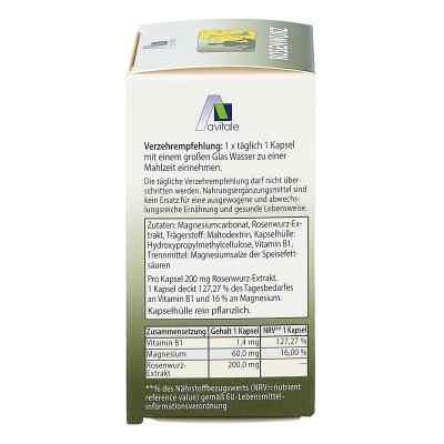 Rosenwurz Kapseln 200 mg  bei versandapo.de bestellen