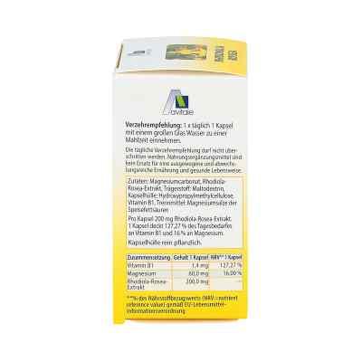 Rhodiola Rosea Kapseln 200 mg  bei versandapo.de bestellen