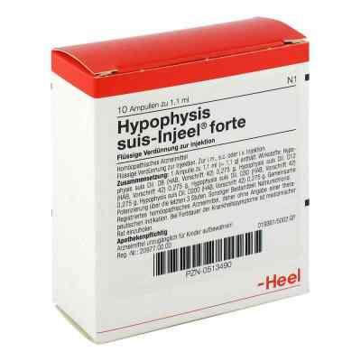 Hypophysis Suis Injeel forte Ampullen  bei versandapo.de bestellen