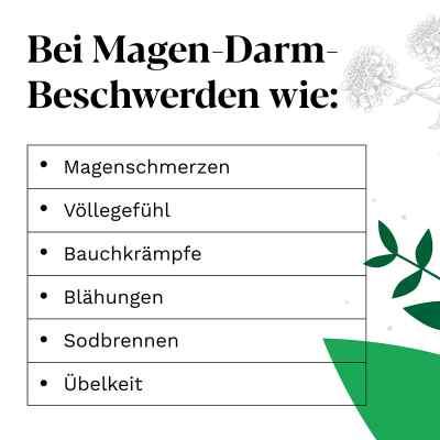 Iberogast bei Magen-Darm-Beschwerden  bei versandapo.de bestellen