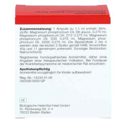 Magnesium Phosphoricum Injeel forte Ampullen  bei versandapo.de bestellen