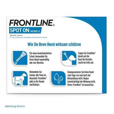 Frontline Spot on Hund 10 veterinär Lösung gegen Floh und Zecke  bei versandapo.de bestellen