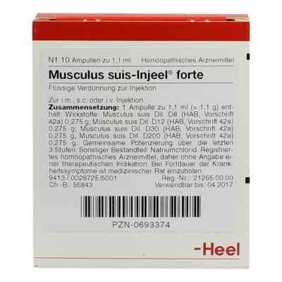 Musculus suis Injeel forte Ampullen  bei versandapo.de bestellen