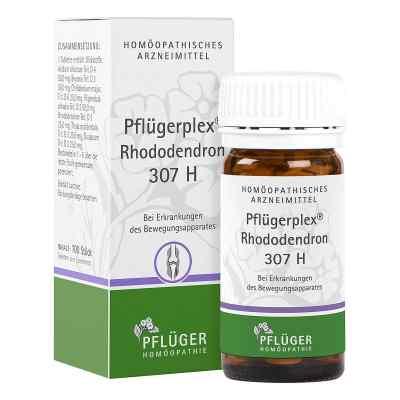 Pflügerplex Rhododendron 307 H Tabletten  bei versandapo.de bestellen
