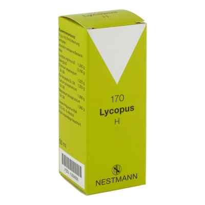 Lycopus H Nummer 170 Tropfen  bei versandapo.de bestellen