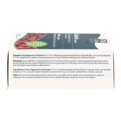 Grünlipp Muschel Gelenk Kapseln  bei versandapo.de bestellen