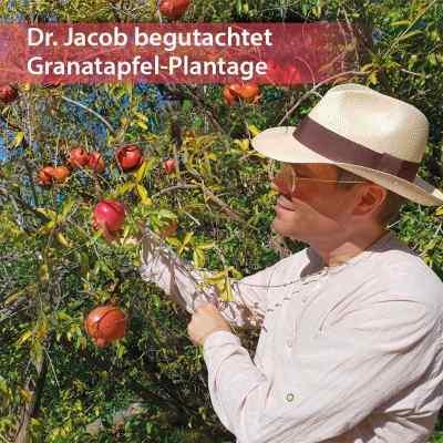 Dr. Jacob's Granatapfel-Elixier  bei versandapo.de bestellen