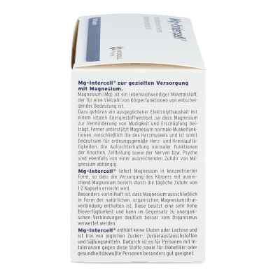 Mg Intercell Kapseln  bei versandapo.de bestellen