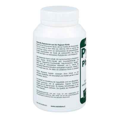 Pygeum Phytosterol vegetarisch Kapseln  bei versandapo.de bestellen