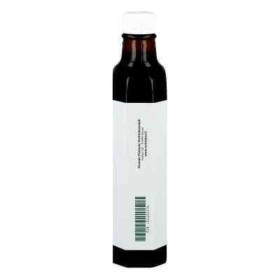 Schwarzkümmelöl 100% ägyptisch kaltgepresst  bei versandapo.de bestellen