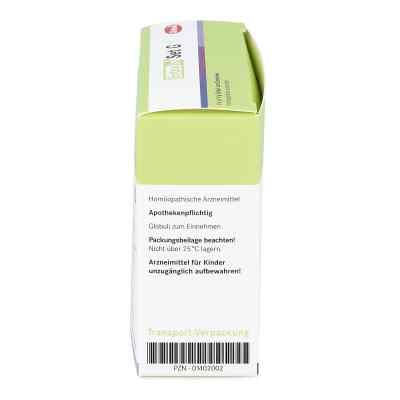Entoxin Set G Globuli  bei versandapo.de bestellen