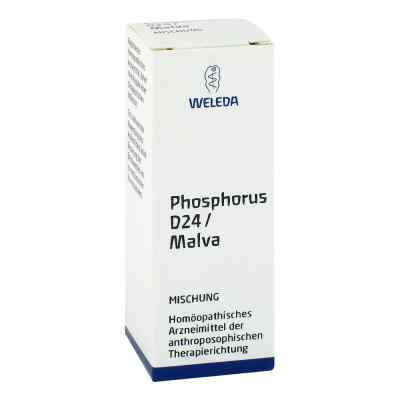 Phosphorus D 24/ Malva Dilution  bei versandapo.de bestellen