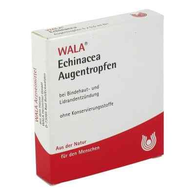 Echinacea Augentropfen  bei versandapo.de bestellen