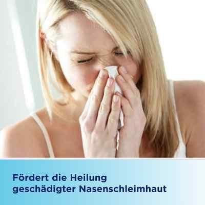 Bepanthen Augen- und Nasensalbe  bei versandapo.de bestellen