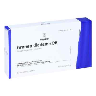 Aranea Diadema D 6 Ampullen  bei versandapo.de bestellen