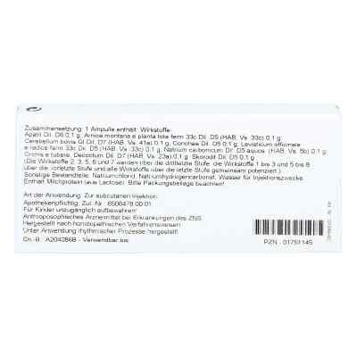 Cerebellum Comp. Ampullen  bei versandapo.de bestellen