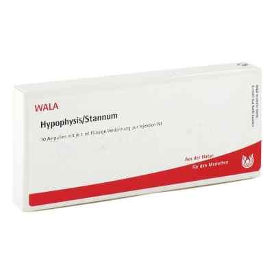 Hypophysis/stannum Ampullen  bei versandapo.de bestellen