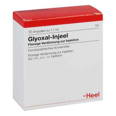 Glyoxal Injeel Ampullen  bei versandapo.de bestellen