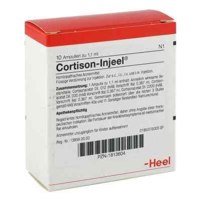 Cortison Injeel Ampullen  bei versandapo.de bestellen