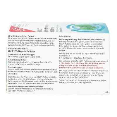 H&S Pfefferminzblätter  bei versandapo.de bestellen