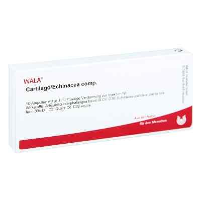Cartilago/echinacea compositus Ampullen  bei versandapo.de bestellen