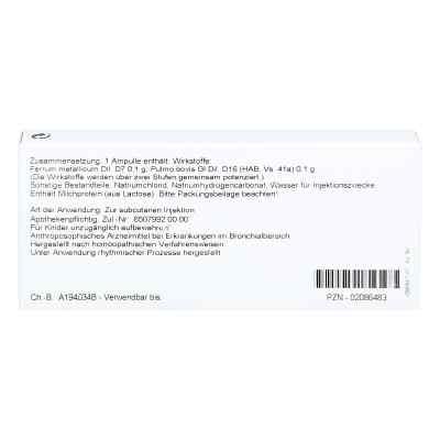 Pulmo/ Ferrum Ampullen  bei versandapo.de bestellen