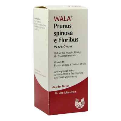 Prunus Spinosa E Flor. W 5% Oleum  bei versandapo.de bestellen