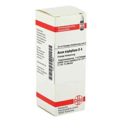 Arum Triphyllum D 4 Dilution  bei versandapo.de bestellen
