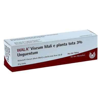 Viscum Mali e planta tota Salbe 3%  bei versandapo.de bestellen