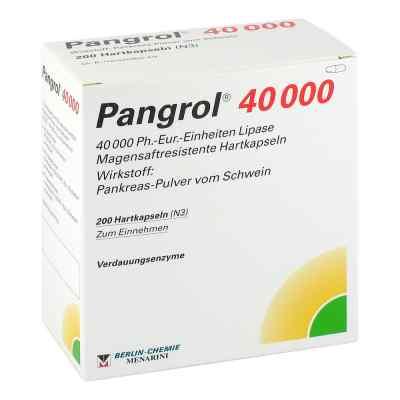 Pangrol 40000  bei versandapo.de bestellen