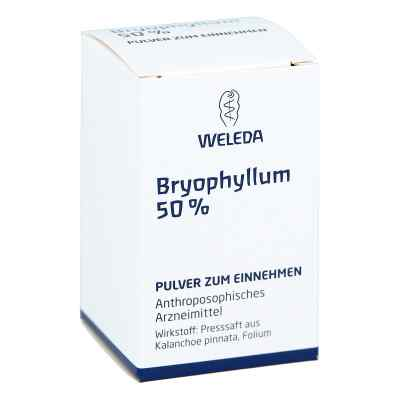Bryophyllum 50% Pulver zum Einnehmen  bei versandapo.de bestellen