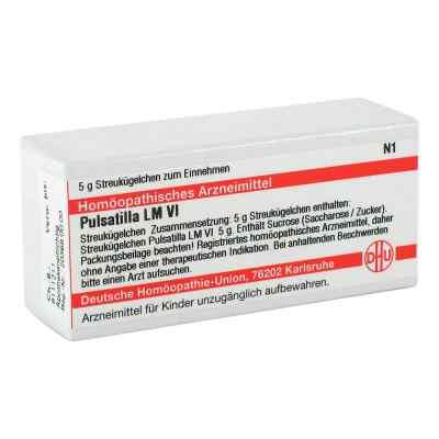 Lm Pulsatilla Vi Globuli  bei versandapo.de bestellen