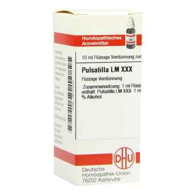 Lm Pulsatilla Xxx  bei versandapo.de bestellen