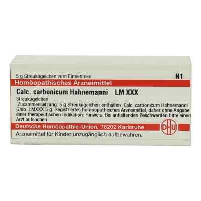 Lm Calcium Carb. Xxx Globuli Hahnemanni  bei versandapo.de bestellen