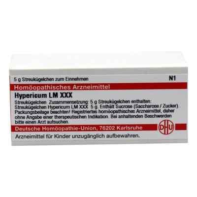 Lm Hypericum Xxx Globuli  bei versandapo.de bestellen