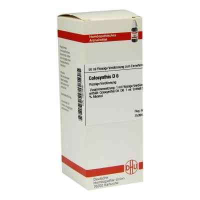 Colocynthis D 6 Dilution  bei versandapo.de bestellen