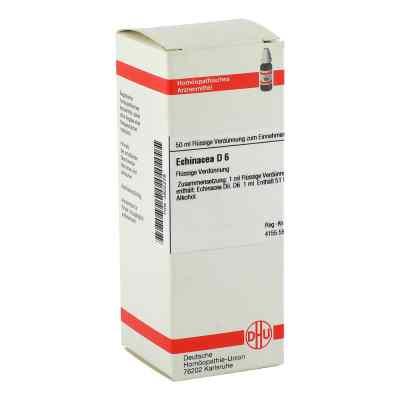 Echinacea Hab D 6 Dilution  bei versandapo.de bestellen