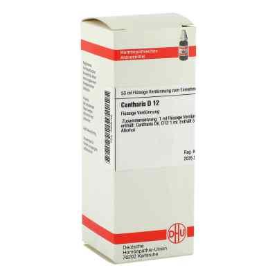 Cantharis D 12 Dilution  bei versandapo.de bestellen