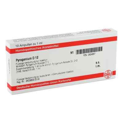 Pyrogenium D 12 Ampullen  bei versandapo.de bestellen