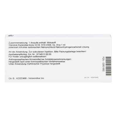 Glandula Thyreoidea Gl D 10 Ampullen  bei versandapo.de bestellen