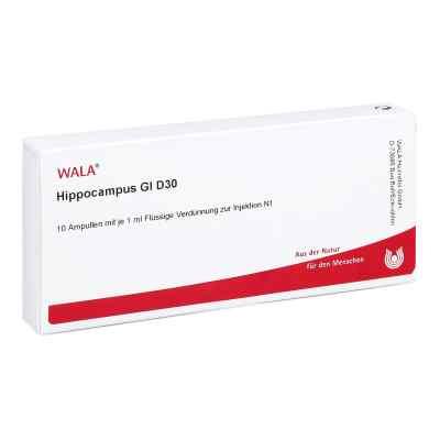 Hippocampus Gl D 30 Ampullen  bei versandapo.de bestellen