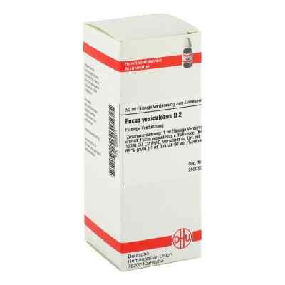 Fucus Vesiculosus D 2 Dilution  bei versandapo.de bestellen
