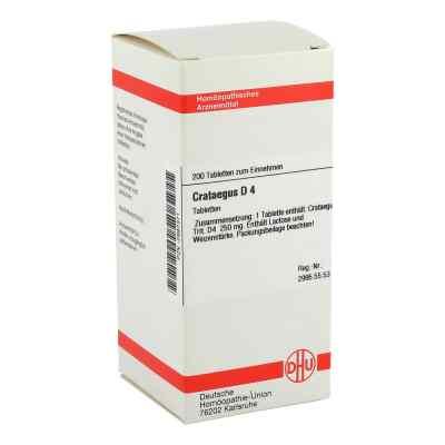 Crataegus D 4 Tabletten  bei versandapo.de bestellen