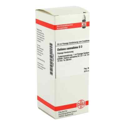 Datisca Cannabina D 3 Dilution  bei versandapo.de bestellen