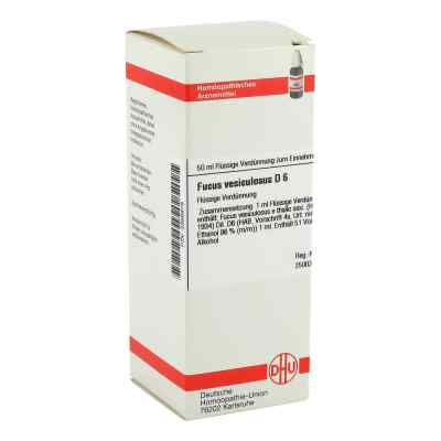Fucus Vesiculosus D 6 Dilution  bei versandapo.de bestellen