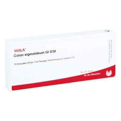 Colon Sigmoideum Gl D 30 Ampullen  bei versandapo.de bestellen