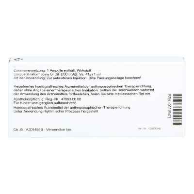 Corpus Striatum Gl D 30 Ampullen  bei versandapo.de bestellen